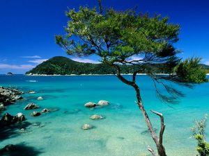 Nova Zelandia (National Geographic)