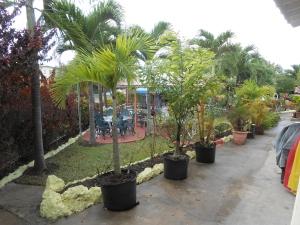 Jardim com gazebo