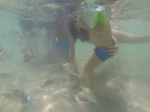 Nadando com os peixes :-)
